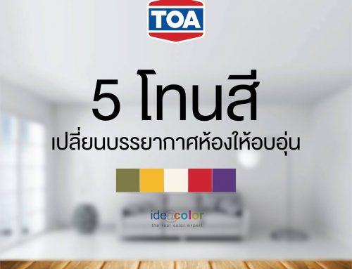 5 โทนสี ที่จะเปลี่ยนบรรยากาศทำให้บ้านคุณดูอบอุ่นขึ้น